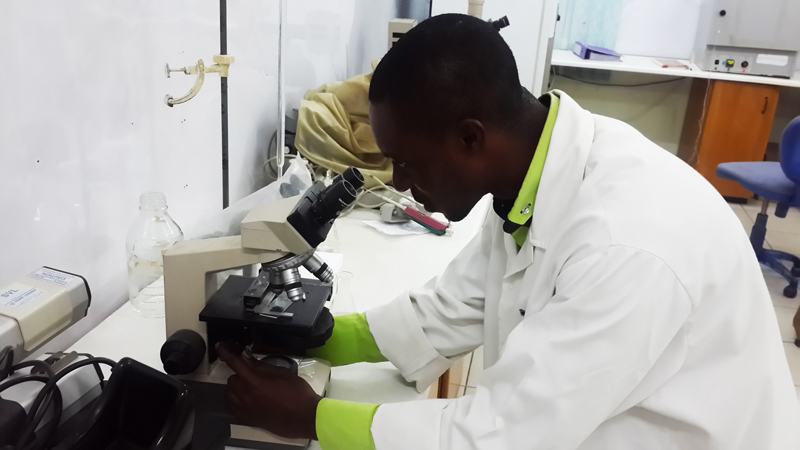 Microbiological Analysis offered by the CSIR-Food Research Institute, Ghana