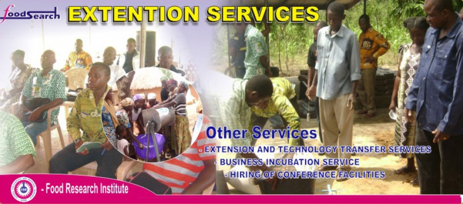 Extension Service